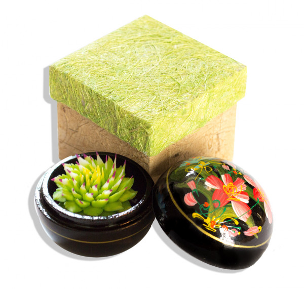 Lotus spitz Grün