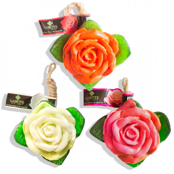 Rosen rot + weiß + rosa